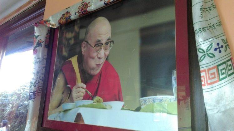 圖說:達蘭薩拉店家所懸掛的達賴喇嘛照片