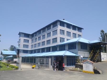 Blue Fields茶葉工廠