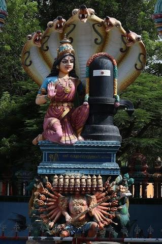 Durga是Parvathi的化身之一, 傳說她騎在獅子上, 一口吞掉一個惡人的頭, 威力不下於她的丈夫Shiva. Parvathi與Durga代表女性力量的一體兩面, 溫柔與暴烈, 奉獻與救贖, 都是愛的面貌