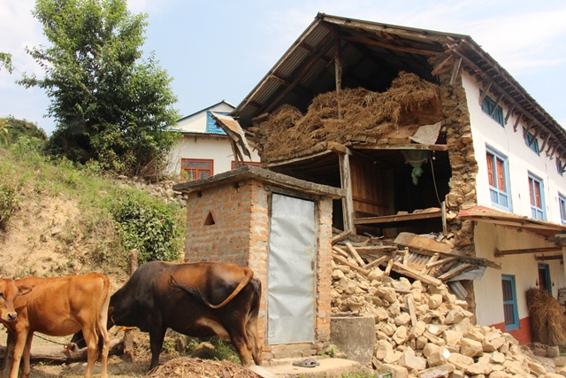 Nepal earthquake Claire Lin 1