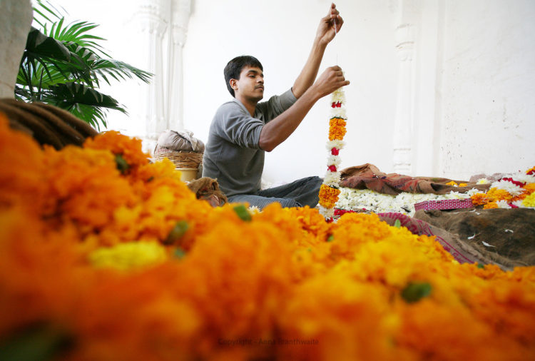 Garland flower maker, Jodhpur.