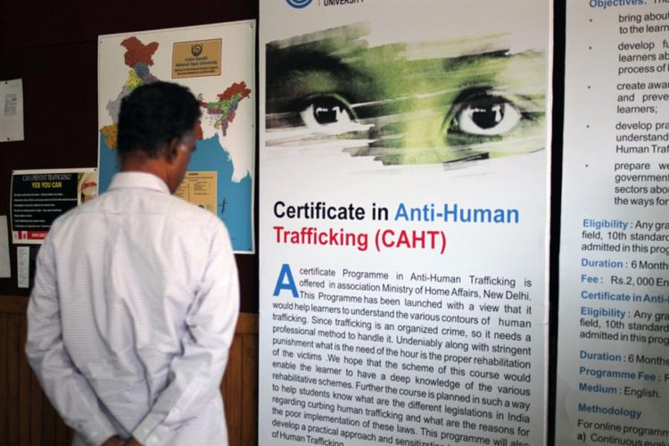 certificate-in-anti-human-t
